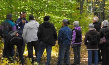 Nouvelles activités découvertes sur la forêt à la Réserve Naturelle Beauréal de Sainte-Julienne
