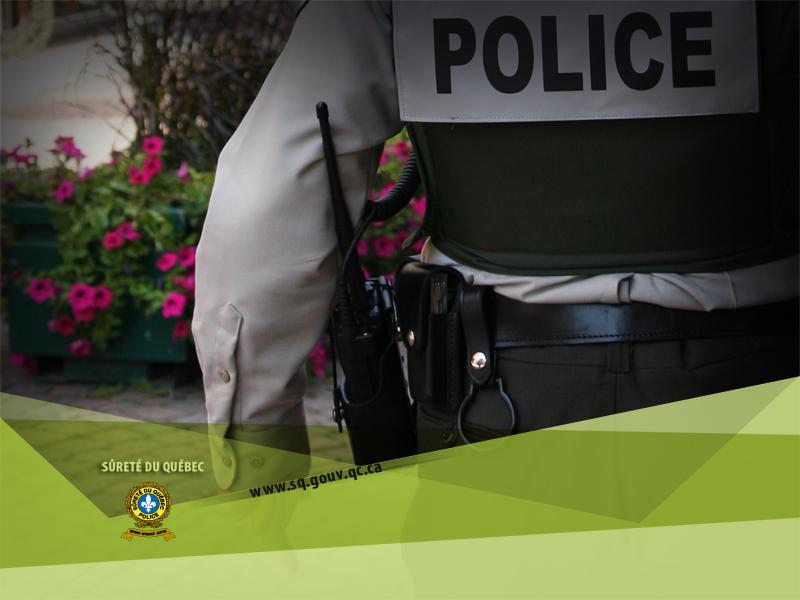 Un chauffard est arrêté après une poursuite policière