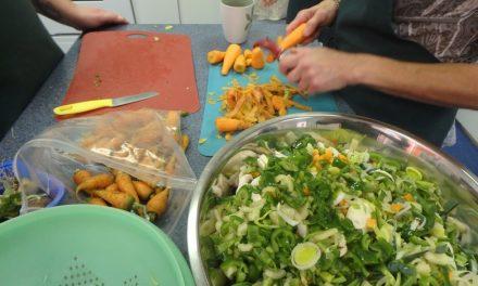 Projet Cultivons et mangeons local : 1 700 personnes rejointes et 56 potagers conçus!