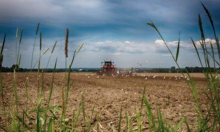 Le processus enclenché dans la MRC de D'Autray. Plan de développement de la zone agricole