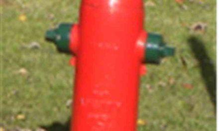 Inspection des bornes-fontaines sur le territoire de Joliette
