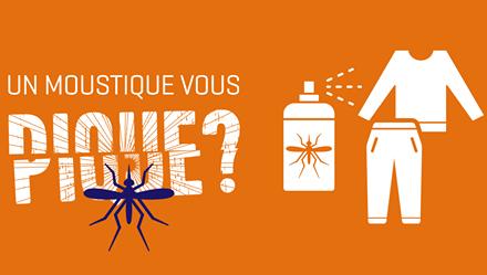 Piqûres de moustiques : les dangers
