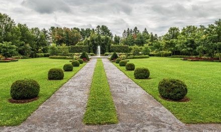 Exposition artistique sur le thème végétal à Maison et jardins Antoine-Lacombe