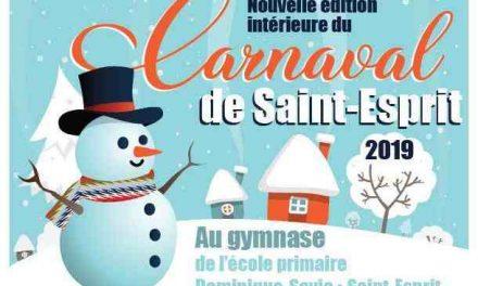 Nouvelle édition du carnaval intérieur de Saint-Esprit