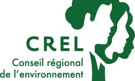 Lancement du projet Lecture nature : l'art de combiner lecture et protection de l'environnement!