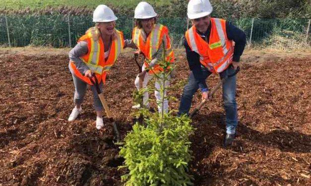 Le ministre Bonnardel procède au début de la plantation d'arbres aux abords de l'autoroute 40 dans Lanaudière