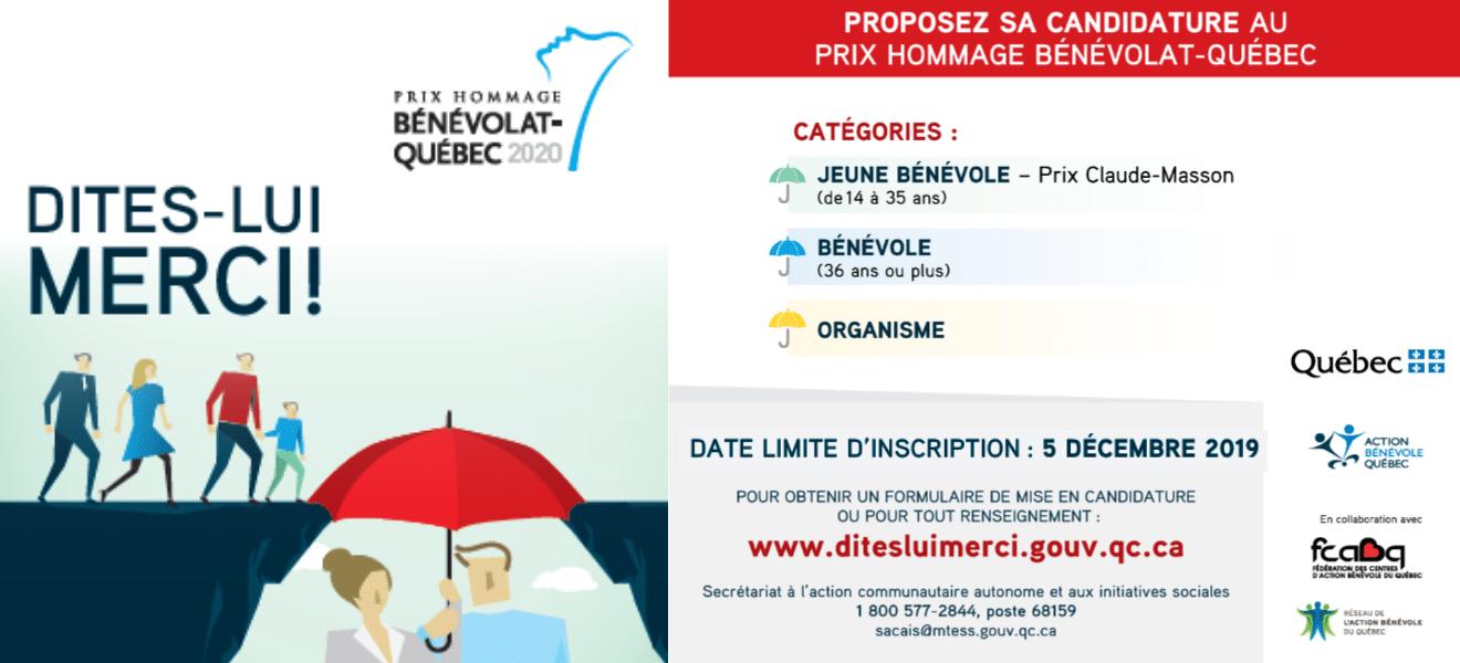 Prix Hommage Benevolat Quebec 2020 L Occasion De Dire Haut