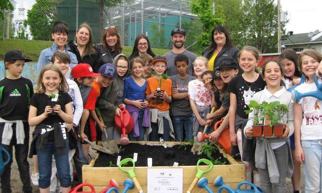 Jardin collectif, un bilan qui fait sourire!