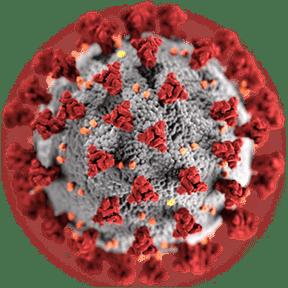 Pandémie de la COVID-19 : Lanaudière devrait bien se tirer d'affaires