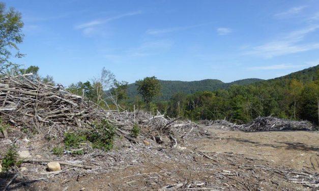 Efforts de concertation et de cohabitation des usagers du territoire forestier