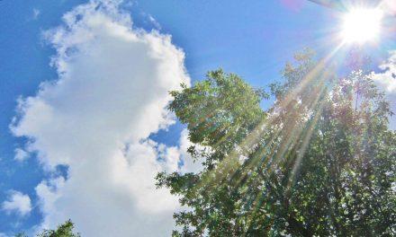 Chaleur estivale : la Direction de santé publique de Lanaudière rappelle les mesures de prévention