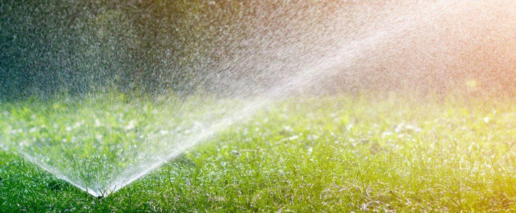 Coup d'envoi du nouvel horaire d'arrosage des pelouses!