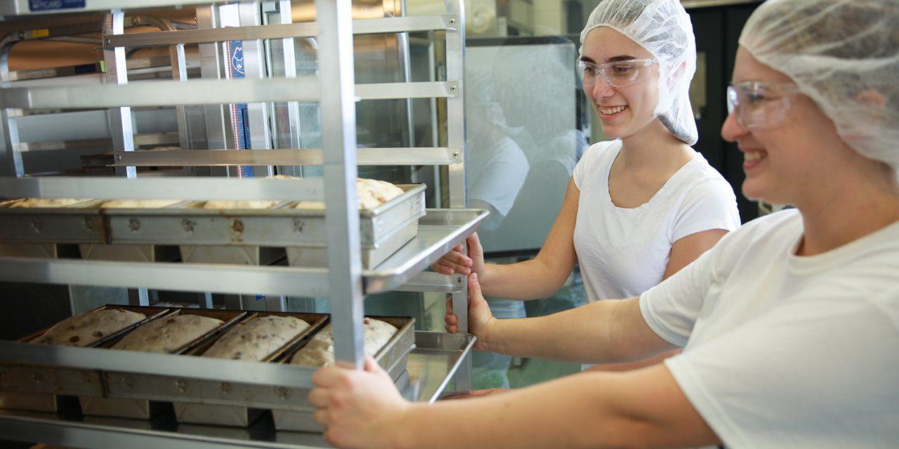 Nouveau site Web pour le programme Technologie des procédés et de la qualité des aliments du Cégep à Joliette