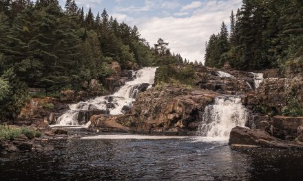 Amélioration de la biodiversité écologique du milieu agricole du Parc des Chutes Monte-À-Peine et Des-Dalles