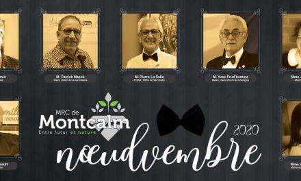 Les élu(e)s de Montcalm fiers supporteurs de la campagne noeudvembre
