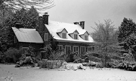 Exposition hivernale de groupe dans les jardins de la Maison Antoine-Lacombe