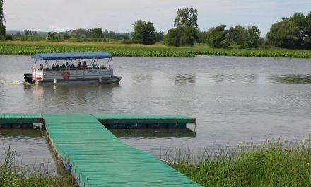 Navette fluviale et croisière dans les îles : une offre variée d'activités