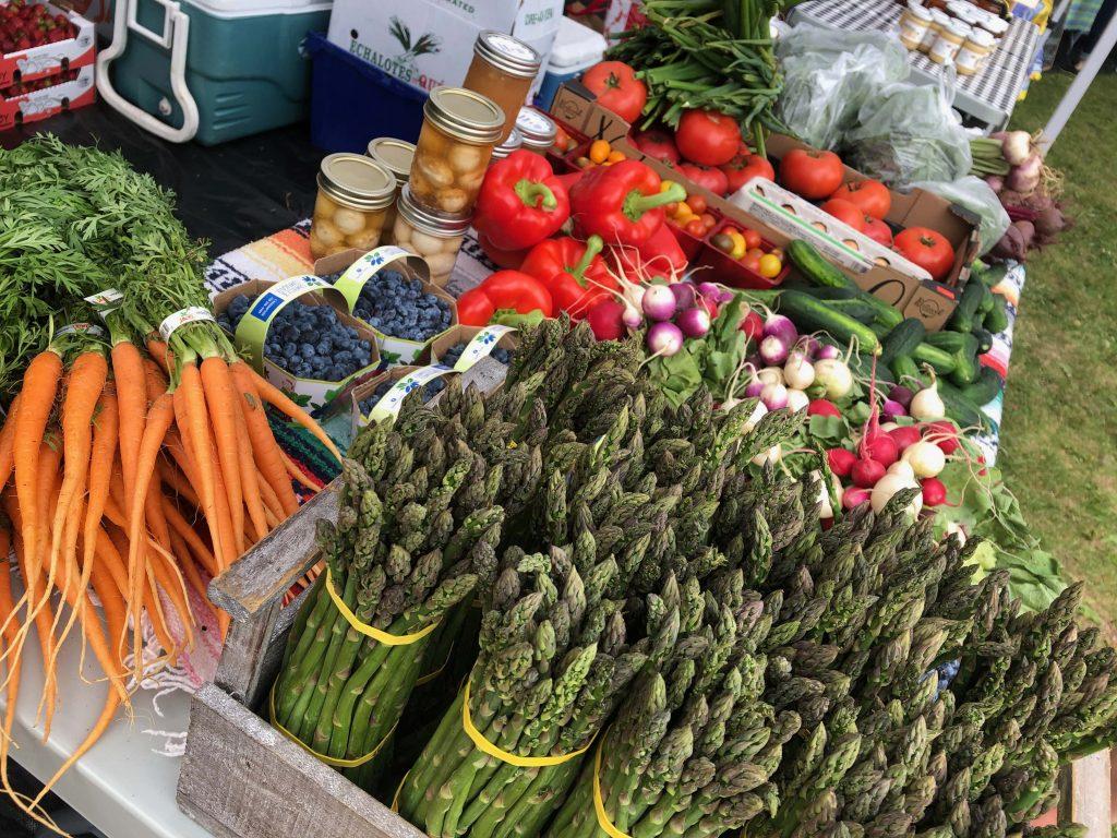 Venez pique-niquer au marché : le vendredi 23 juillet