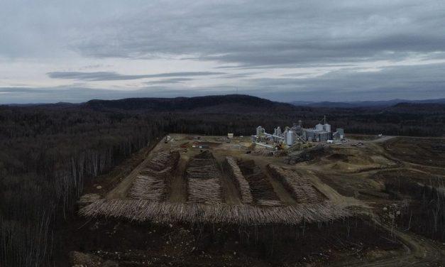 Saint-Michel-de-Saints : l'usine La Granaudière cesse temporairement ses activités
