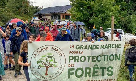 La Grande marche pour la protection des forêts de passage dans Lanaudière